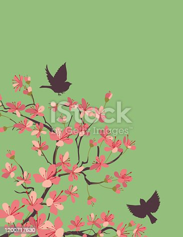 Sakura background template. Flat colors