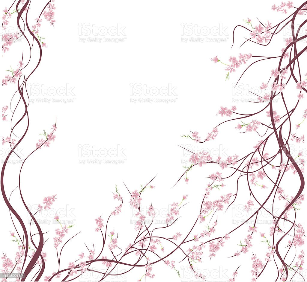 Cherry Blossoms Background Stock Vector Art & More Images ...