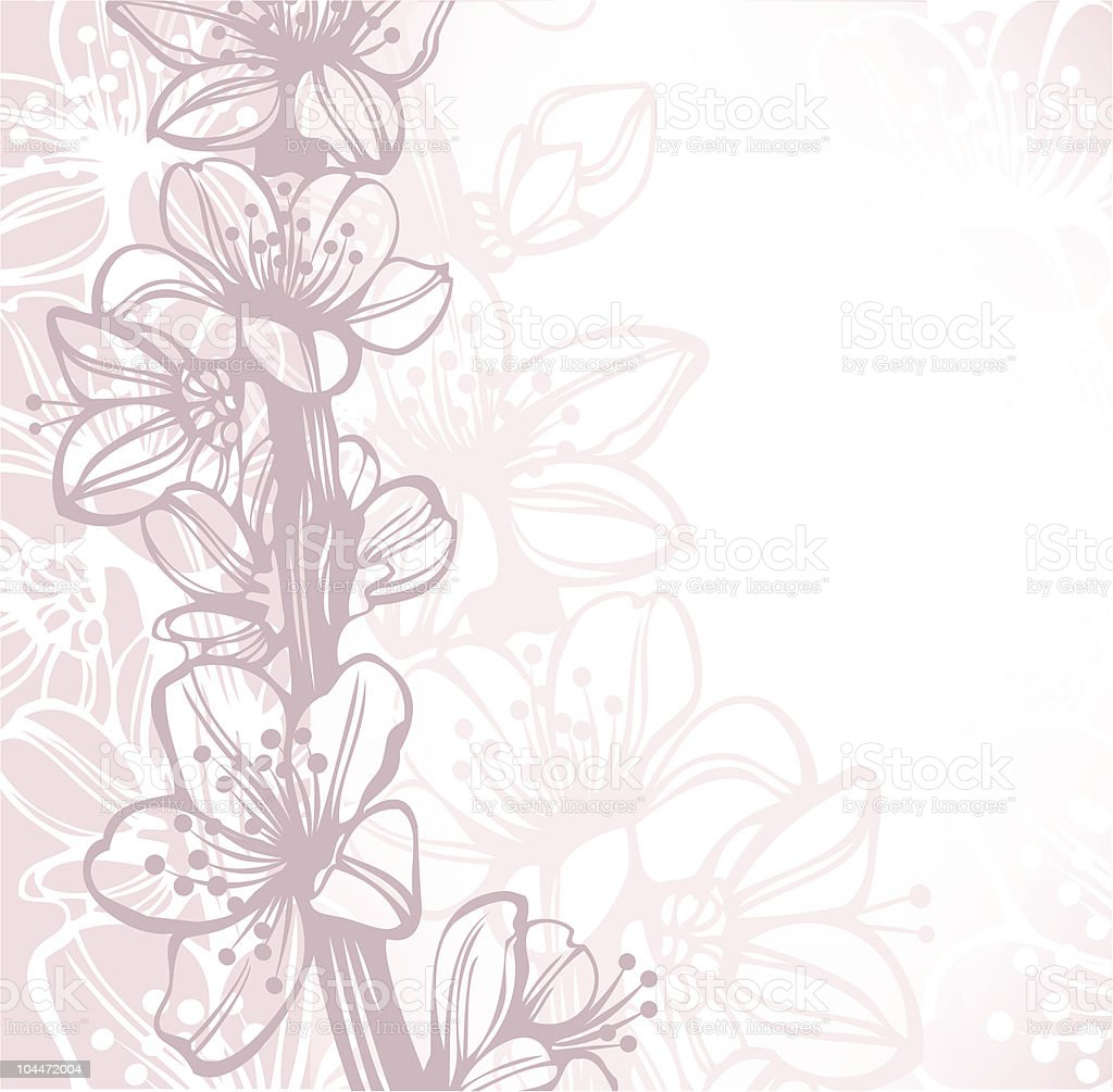 Cherry blossoms background with hand drawn elements vector art illustration