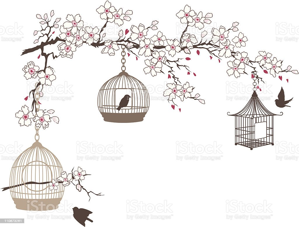cherry blossoms branch with three bird cages hanging stock. Black Bedroom Furniture Sets. Home Design Ideas