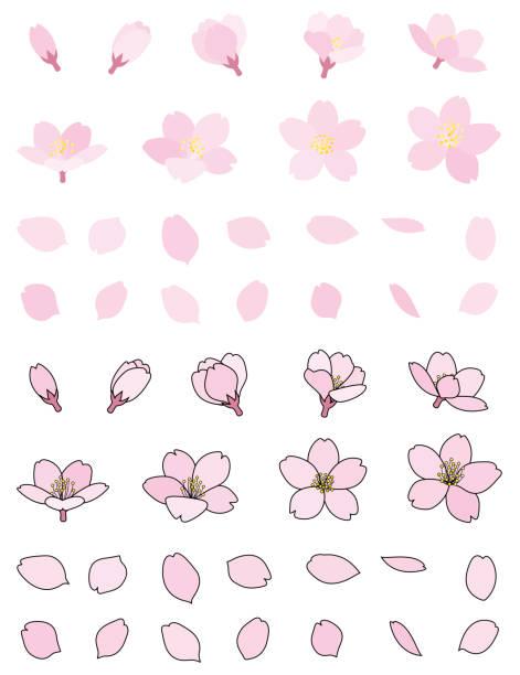桜のつぼみの花びら - 桜点のイラスト素材/クリップアート素材/マンガ素材/アイコン素材