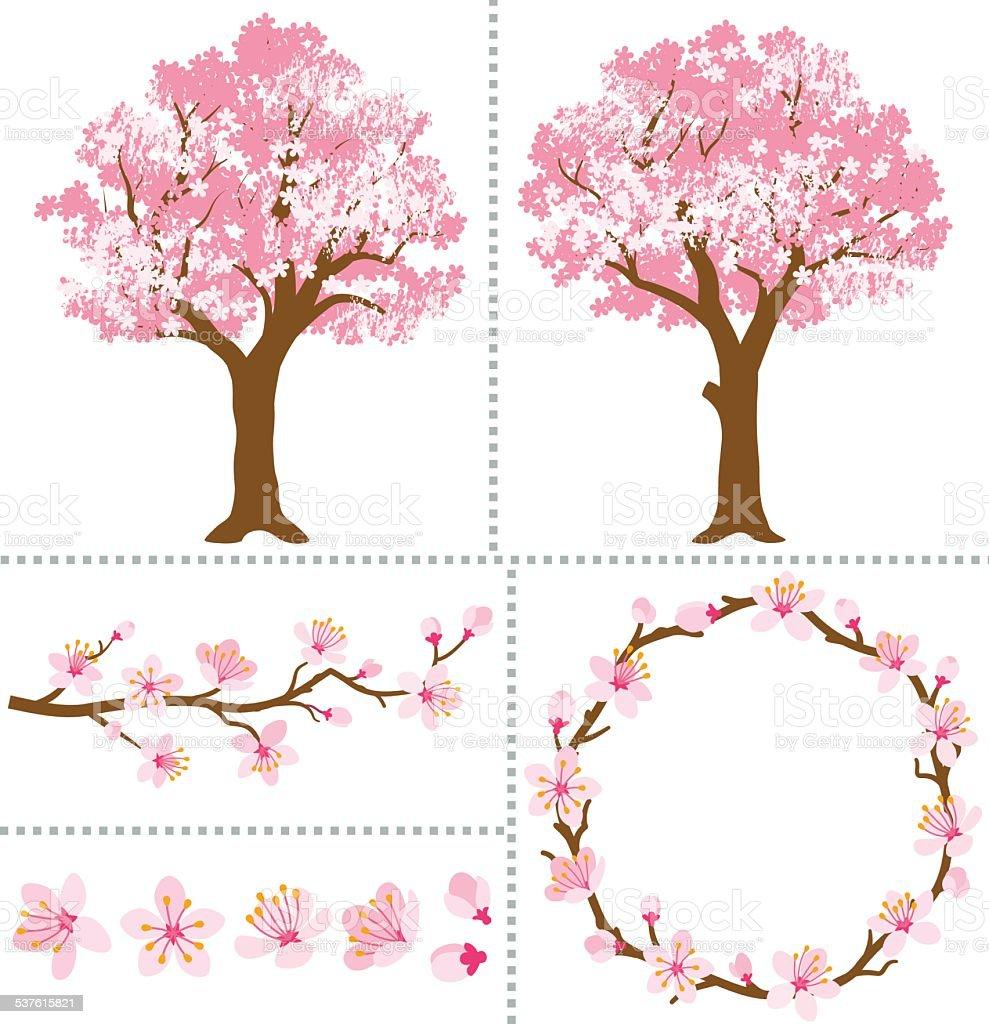 Cherry Blossoms for Design Elements vector art illustration