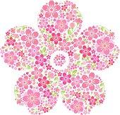 Pink Sakura flowers in Spring