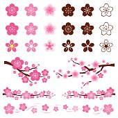 Cherry Blossoms or Sakura in Japanese Set