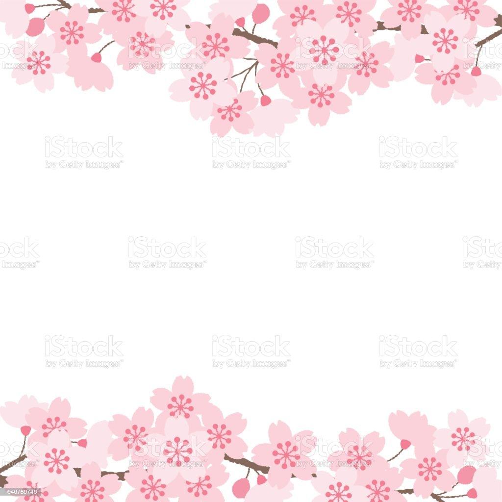 桜の花  ベクターアートイラスト