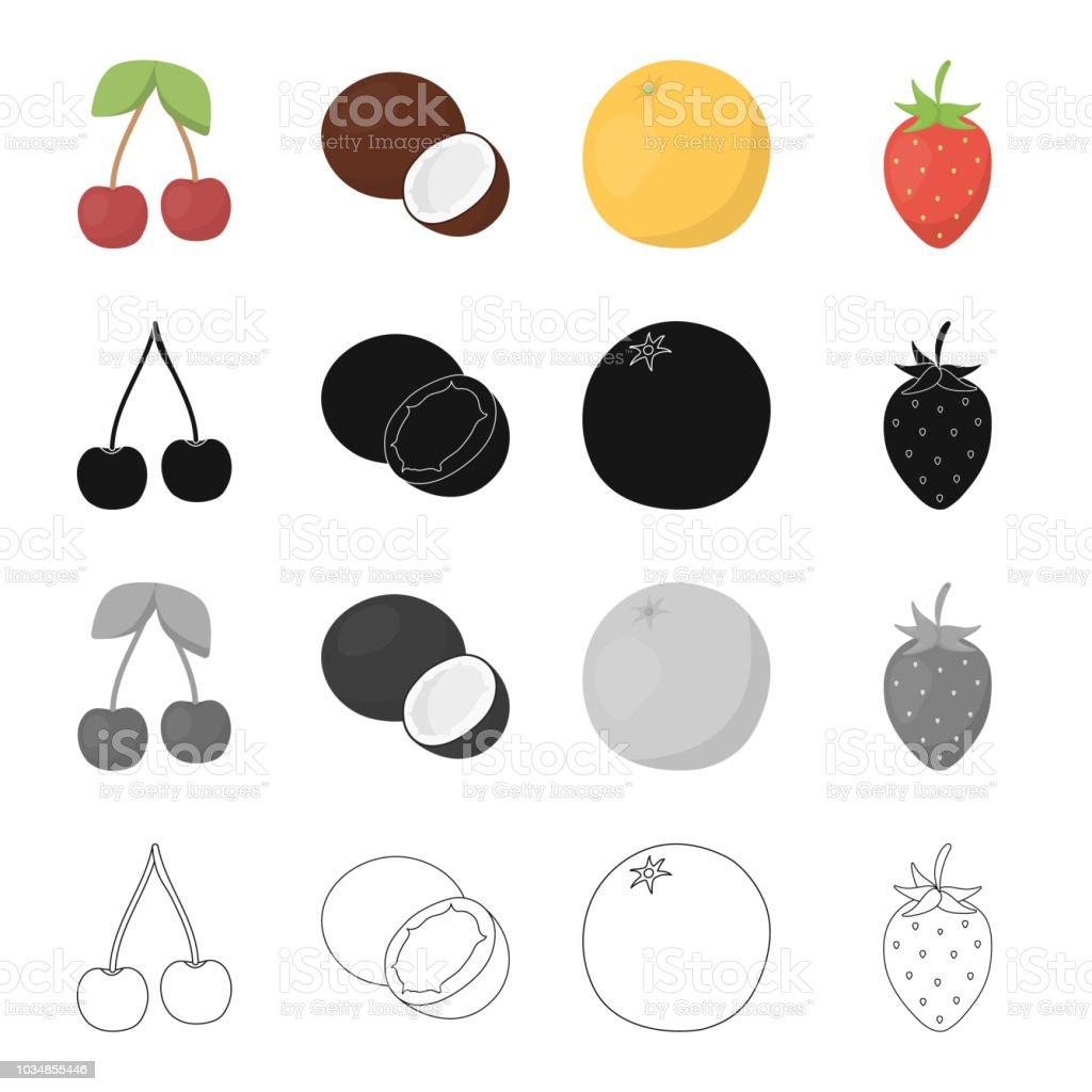 チェリーココナッツ肉おいしいフルーツ オレンジイチゴ果実果物は漫画