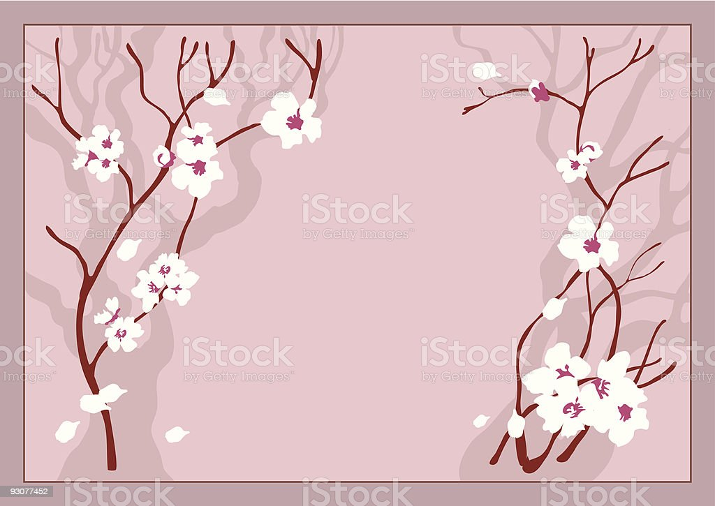 Cherry flowers royalty-free cherry flowers stock vector art & more images of april