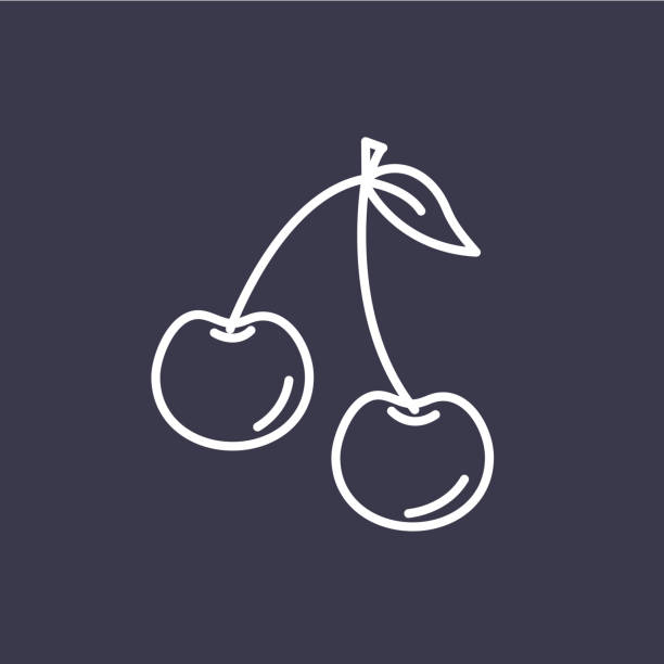 Cherry Fruit Thin Line Icon A thin line icon in a fruit theme. Cherry. cherry stock illustrations