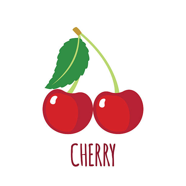Cherry icon in flat style on white background Cherry in flat style. Cherry vector logo. Cherry icon. Isolated object. Natural food. Vector illustration. Cherry on white background cherry stock illustrations