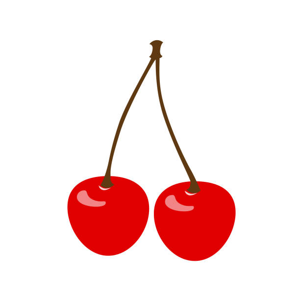 cherry icon vector cherry icon vector illustration cherry stock illustrations