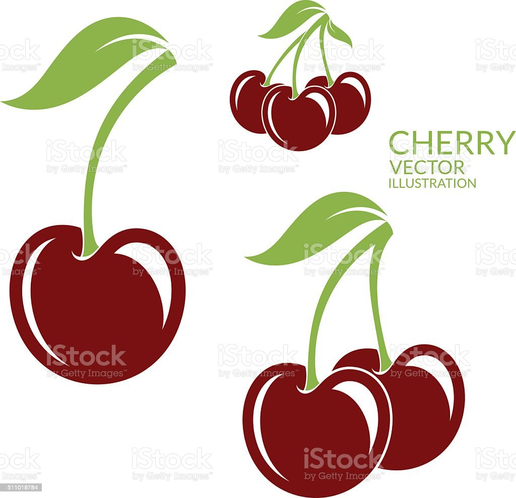 Cherry. Isolated berries on white background vector art illustration