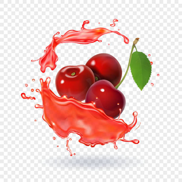 Cherry juice Realistic fresh berry fruit splash of juice Cherry juice Realistic fresh berry fruit splash of juice. cherry stock illustrations