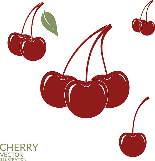 Cherry. Set vector art illustration