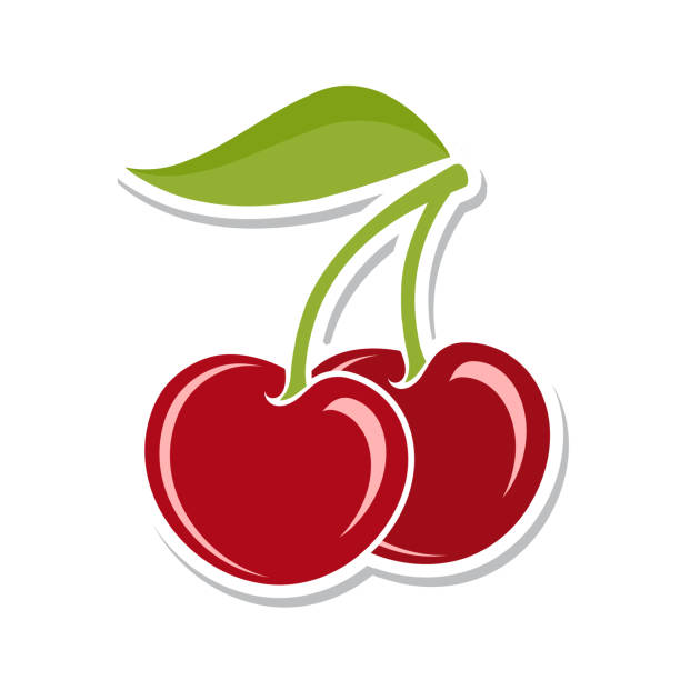 Cherry. Sweet fruit. Isolated berries on white background. Vector illustration. Cherry. Sweet fruit. Isolated berries on white background. Vector illustration cherry stock illustrations
