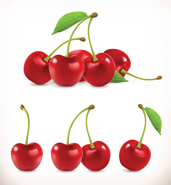 Cherry. Sweet fruit Cherry. Sweet fruit. 3d vector icons set. Realistic illustration cherry stock illustrations