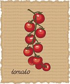 Vector illustration of cherry tomatoes.