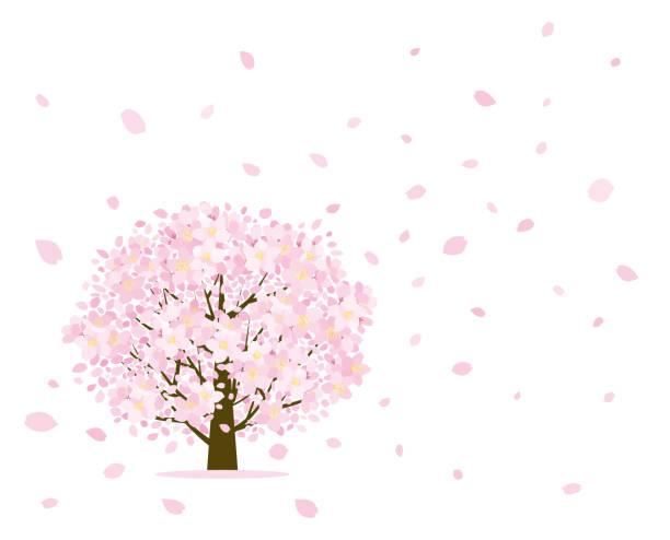 桜の木と花びら - 桜点のイラスト素材/クリップアート素材/マンガ素材/アイコン素材
