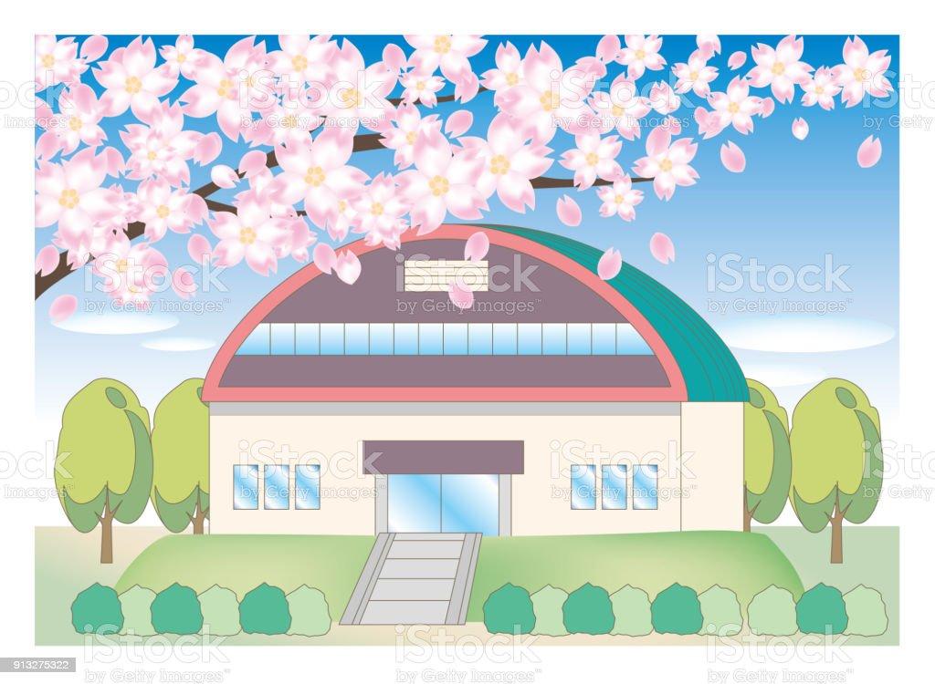 Cherry tree and school landscape - gymnasium vector art illustration