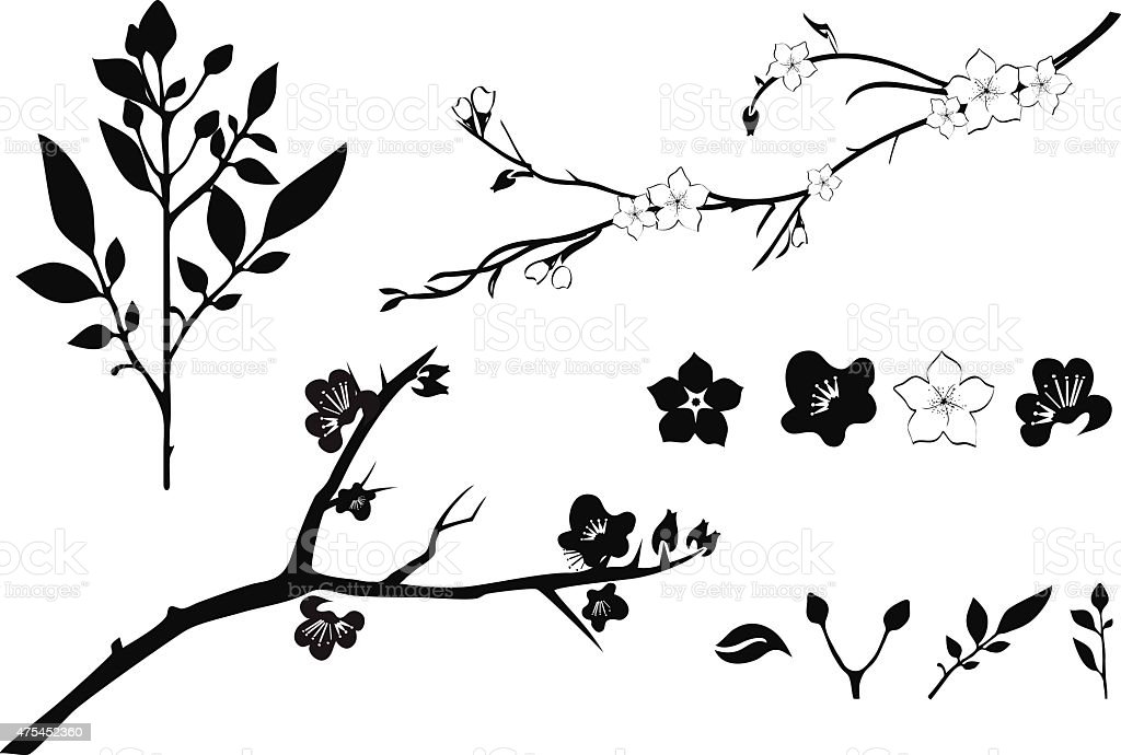 cherry tree branch silhouette stock vector art amp more