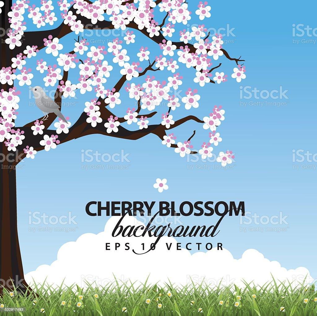 Cherry tree in spring landscape background vector art illustration