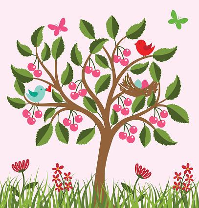 Cherry tree .