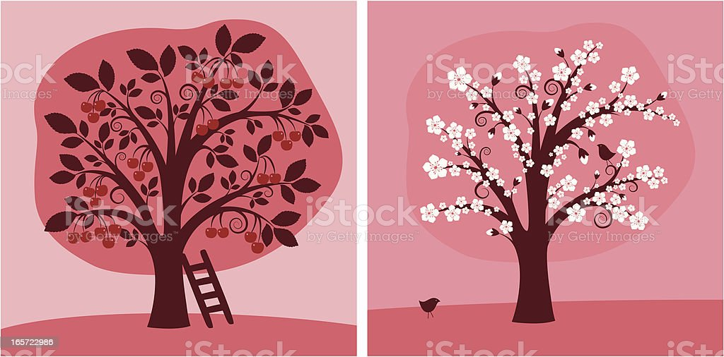 Cherry Tree vector art illustration