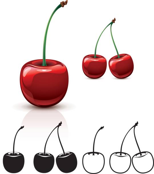 Cherry Single and double cherry. Color, silhouette, line-art versions. cherry stock illustrations