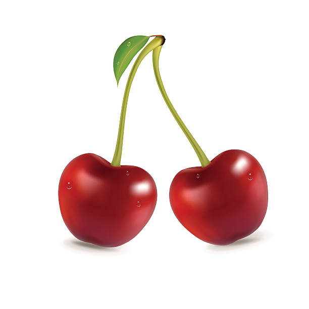 Cherry fresh cherry cherry stock illustrations