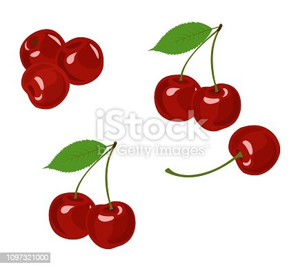 Cherry isolated vector illustration. Cherry collection on white background.