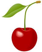 Cherry Vector Symbol