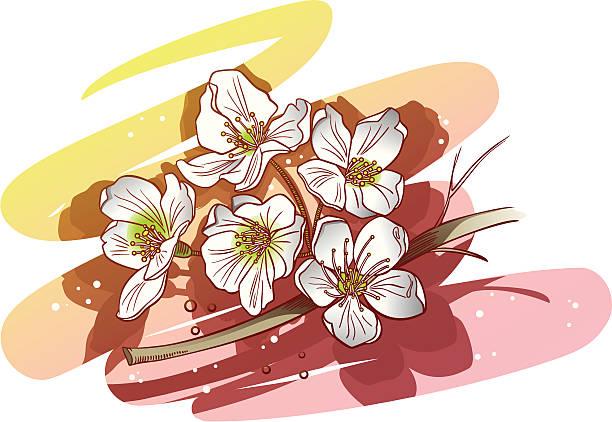 stockillustraties, clipart, cartoons en iconen met cherry/apple flowers - fresh start yellow