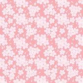 CherryBlossom_background02