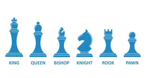 Chess piece name set Chess piece name set. Board game image, king, queen, rook, bishop, knight, pawn symbol. Vector flat style cartoon illustration isolated on white background chess knight silhouette stock illustrations