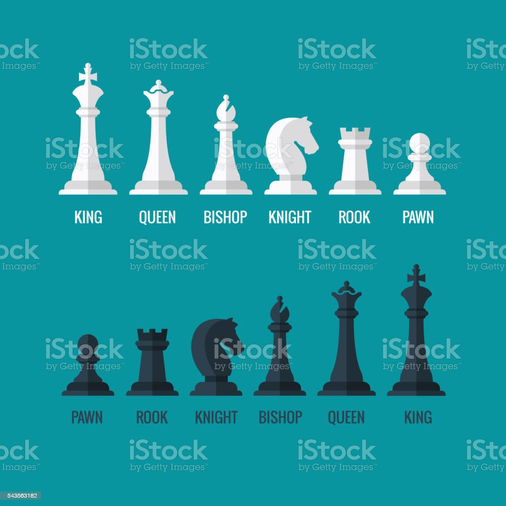 Chess pieces king queen bishop knight rook pawn flat vector