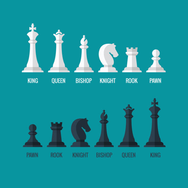 Chess pieces king queen bishop knight rook pawn flat vector Chess pieces king queen bishop knight rook pawn flat vector icons set. Chess figures black and white. Team with chess pieces illustration chess knight silhouette stock illustrations