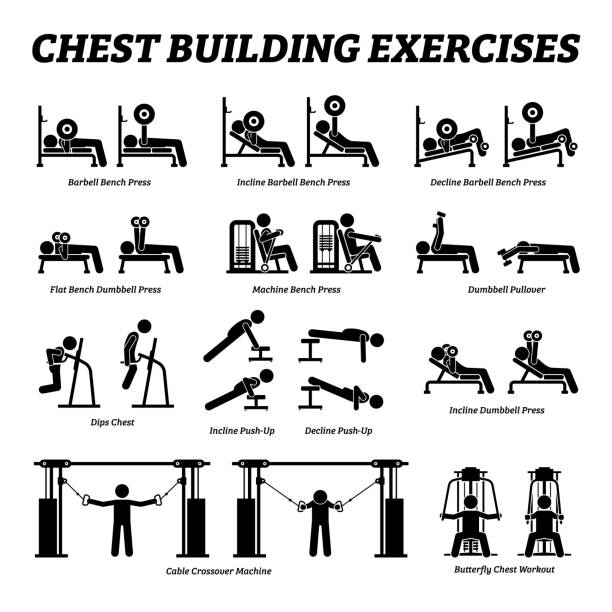 Chest building exercises and muscle building stick figure pictograms. Artworks depict a set of weight training reps workout for chest muscle by gym machine and tools with step by step instructions. exercise machine stock illustrations