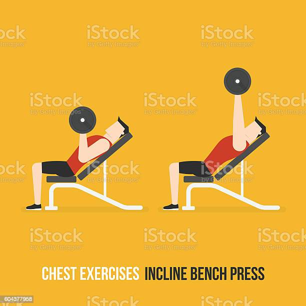 Chest Exercises Incline Bench Press Stock Illustration Download Image Now Istock