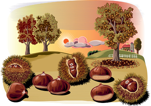 chestnut curls and trees