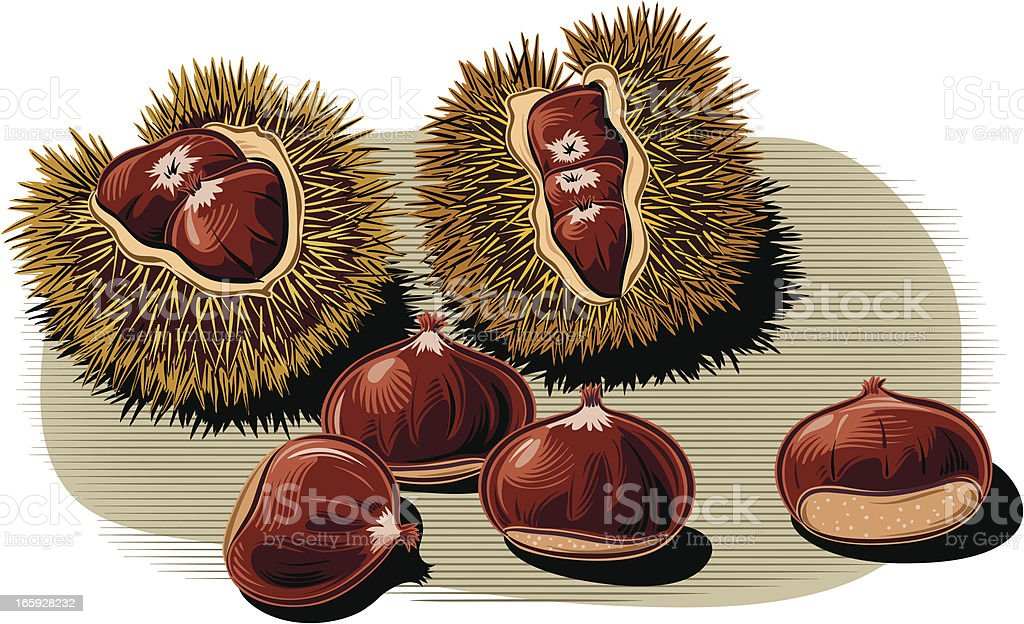 chestnuts royalty-free stock vector art