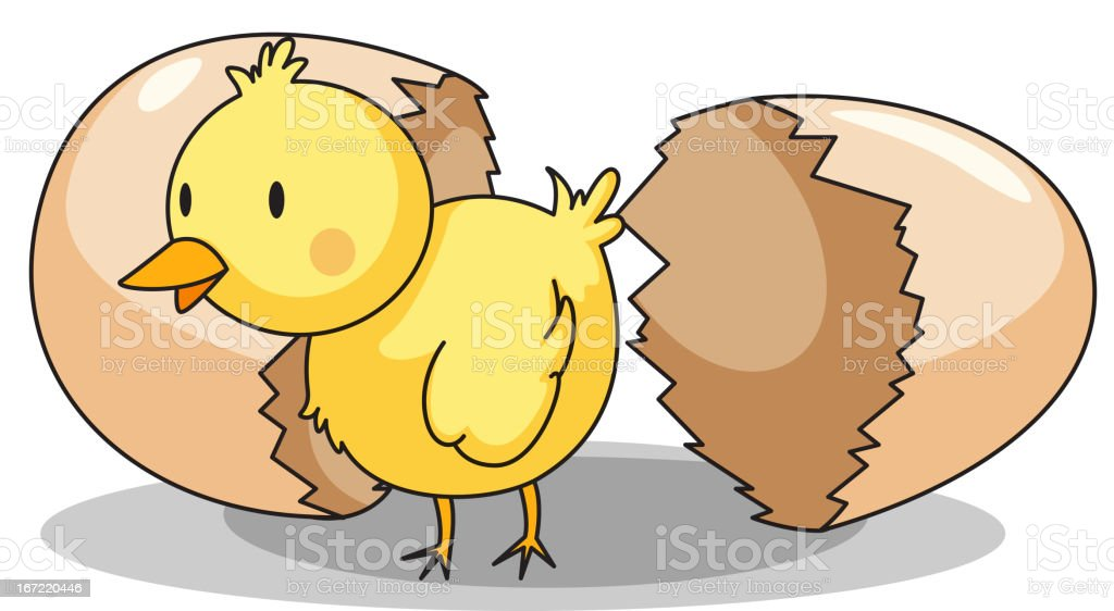 Chick hatching royalty-free stock vector art