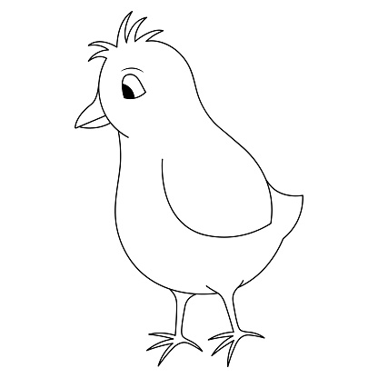 Chick. Sketch. Vector illustration. Coloring book for children. Chicken cub. Nice hairstyle. Outline on white isolated background. Doodle style. Festive print. Light Easter.