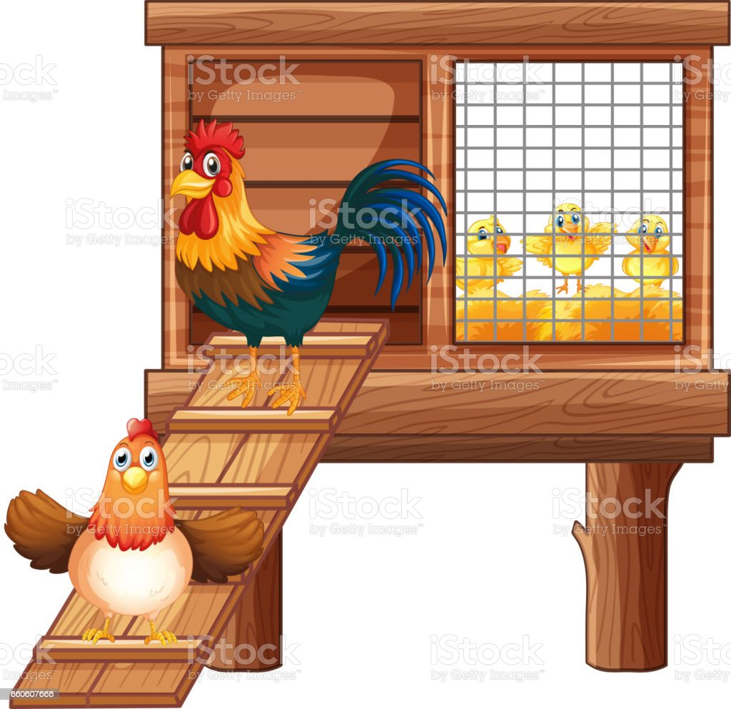 Chicken and chicks in coop royalty-free chicken and chicks in coop stock vector art & more images of agriculture