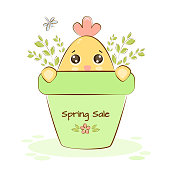Chicken at the spring sale in a flower pot