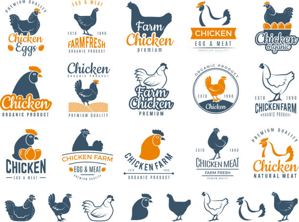 stockillustraties, clipart, cartoons en iconen met kippen badges. verse boerderij voedsel logo koken ei en vogel kuikens vector labels - egg