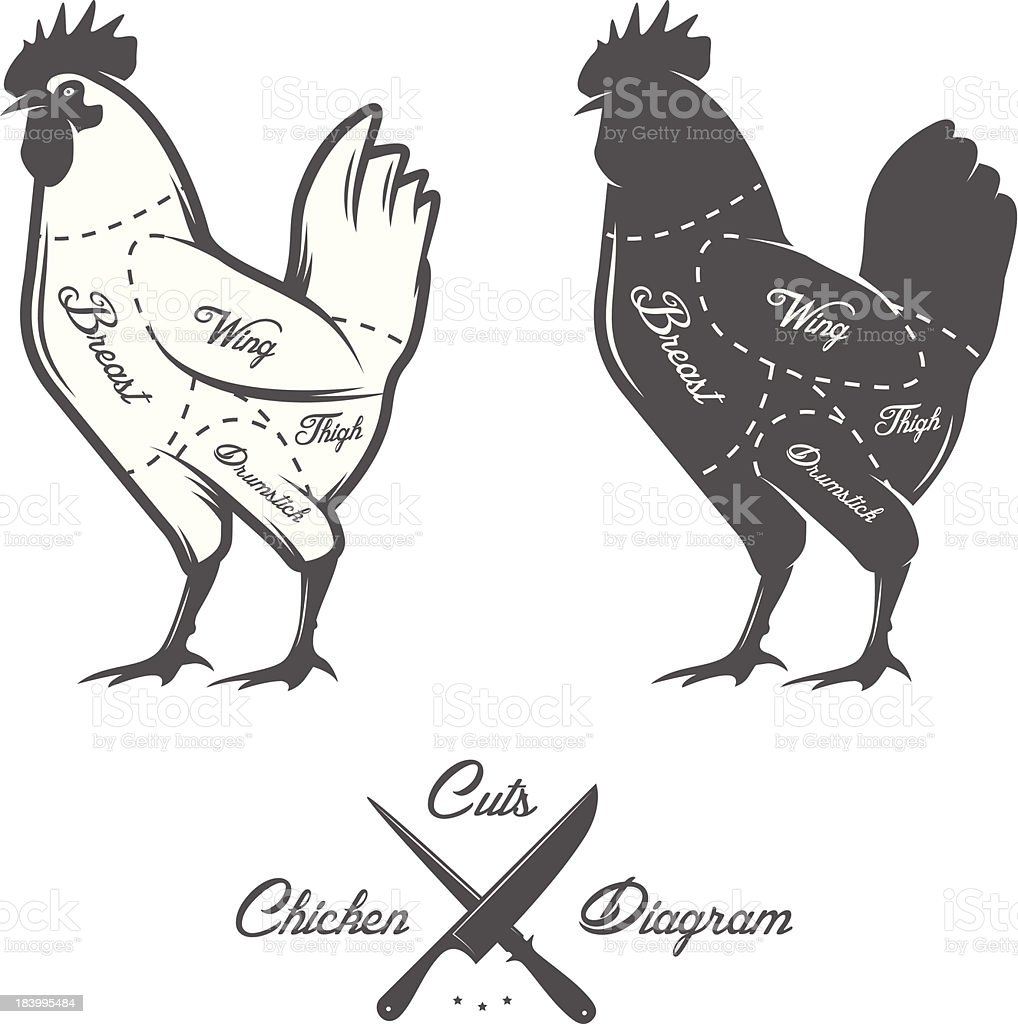 Chicken cuts diagram vector art illustration