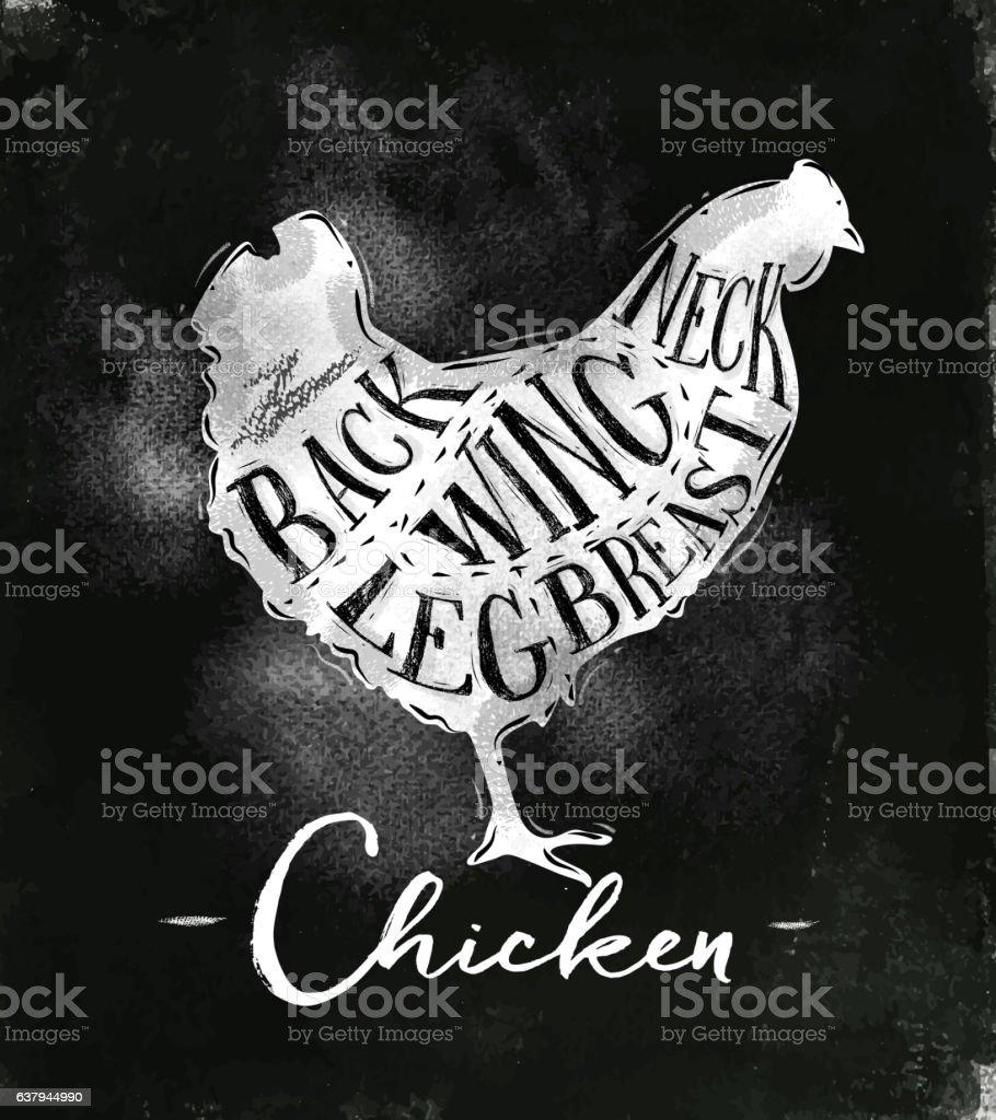Chicken cutting scheme chalk vector art illustration