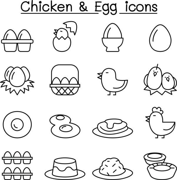 hühnerei & symbolsatz in dünne linienstil - spiegelei stock-grafiken, -clipart, -cartoons und -symbole