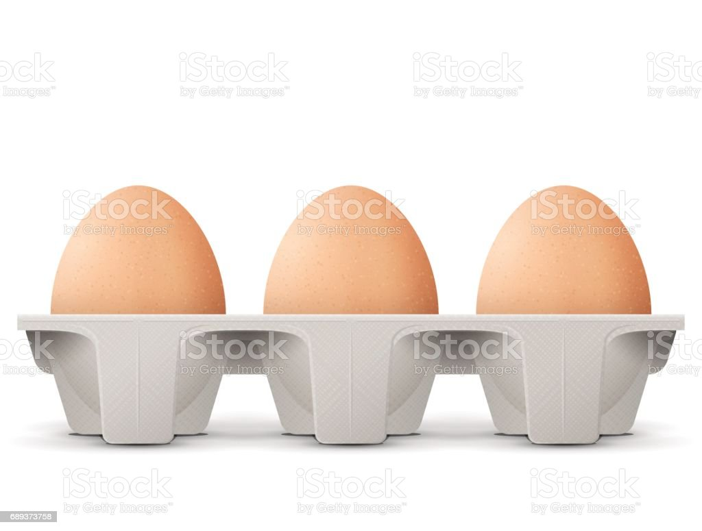 Chicken eggs in carton egg box isolated on white background vector art illustration