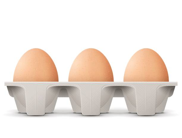 chicken eggs in carton egg box isolated on white background - egg stock illustrations