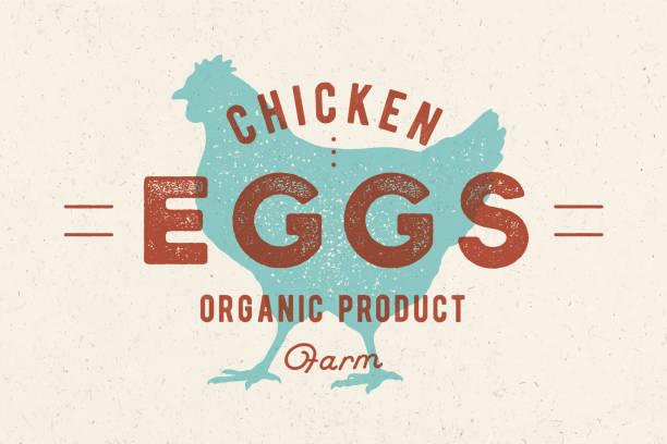 bildbanksillustrationer, clip art samt tecknat material och ikoner med kyckling ägg. vintage handritad logotyp - höna